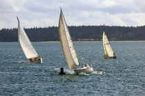 Sailboats-racing0482