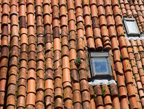 Tile Roof by Louise Heusinkveld