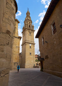 Detached tower of the cathedral of Santo Domingo de la Calzada von Louise Heusinkveld