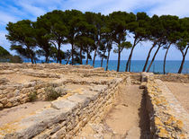 Ruins of the Greek City of Empuries, Catalonia, Spain by Louise Heusinkveld