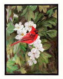 Red Bird on Hawthorn Flowers by Linda Ginn