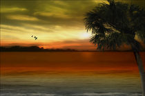 Tropical-serenity