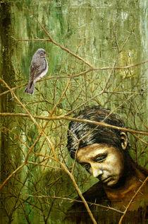 Dornenvogel by Thomas Bley