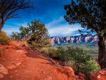 Trail on Arizona Red Rocks by Jim DeLillo