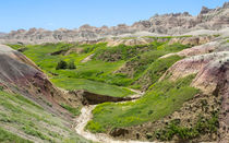 Spring In The Badlands by John Bailey