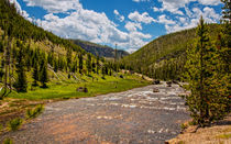 The Gibbons River Yellowstone Ntional Park von John Bailey