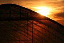Evening sun behind a greenhouse von atari-frosch