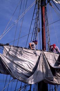 Set Sail 285 by Patrick O'Leary