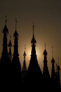 pagoda silhouette by Sandro Loos