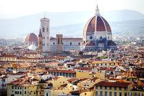 Florence panoramic view by tanialerro