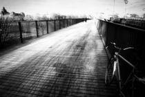 Albertbrücke Dresden von Dorit Fuhg