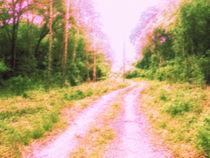 Alley Through The Woods von Zachary Ryals