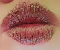 Brown lips von Amanda Elizabeth  Sullivan