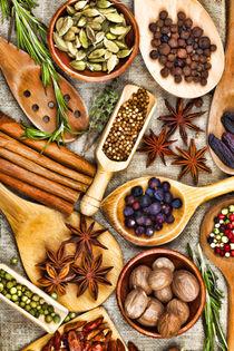 Spice-herb-vegetable-78-gemalt