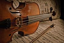 Violine von gibleho