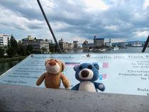 Zwei Bären im Dreiländereck by Olga Sander
