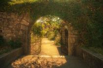 Gate in a Fairy Tale by cinema4design