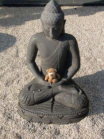Meditieren mit Buddha von Olga Sander