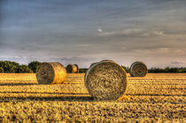 Farm Bales by David Pyatt
