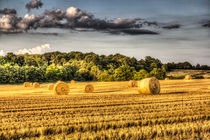 The Farm In Summer by David Pyatt