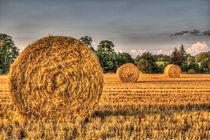 The Straw Bales by David Pyatt