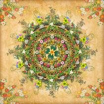 Mandala-flora