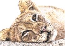 Löwenkind - Young Lion von Nicole Zeug