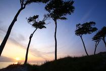Sonnenuntergang auf dem Darß von Jens Uhlenbusch