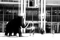 Back to Mammut by Bastian  Kienitz