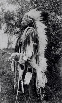 White Wolf, a Comanche Chief, c.1891-98 (b/w photo)  by Bridgeman Art