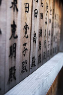 Holztäfelchen mit Kanji 3 by framboise