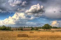 A Summers Evening Farm by David Pyatt