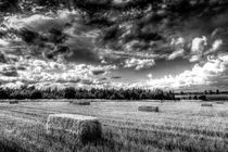 The Late Summer Farm by David Pyatt