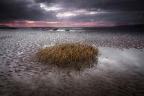 Machynys bay, Llanelli von Leighton Collins