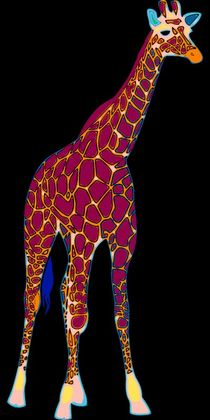 Giraffe Pop Art by Florian Rodarte