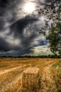 Storm on the Farm by David Pyatt