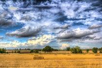 The farm in the summertime  by David Pyatt