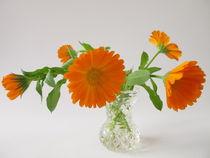 Img-3860-ringelblumen-vase