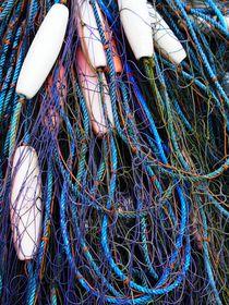 Netzwerk-dot-roe