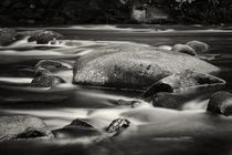 The River by Jörg Hoffmann