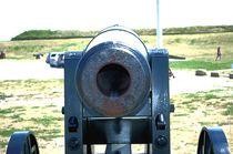 Cannon1d