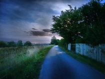Nightwalk by smk