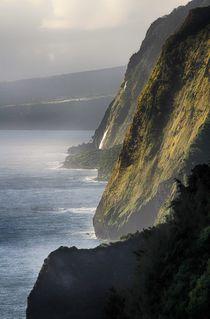 Steilküste auf Big Island, Hawaii von Bruno Schmidiger