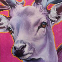 Hirsch pink by Renate Berghaus