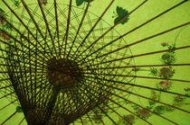 Sonnenschirm grün by peter-adam