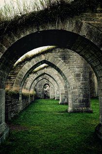 in ruins von svartseidr