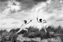 Fencing nr 9 von Irene Hoekstra