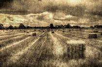 The Farm Vintage Image by David Pyatt