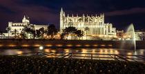 La Seu - Catedral de Mallorca von Moritz Wicklein