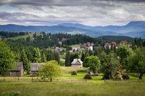 Carpathian mountains in Ukraine by Victoria Savostianova